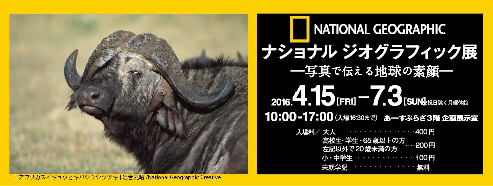 top_mv_nationalgeograhic_buffalo