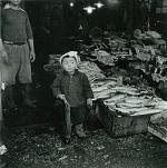 魚屋市場の子ども_長野重一
